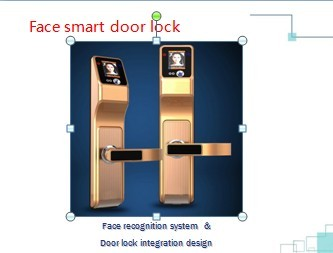 Face smart door lock